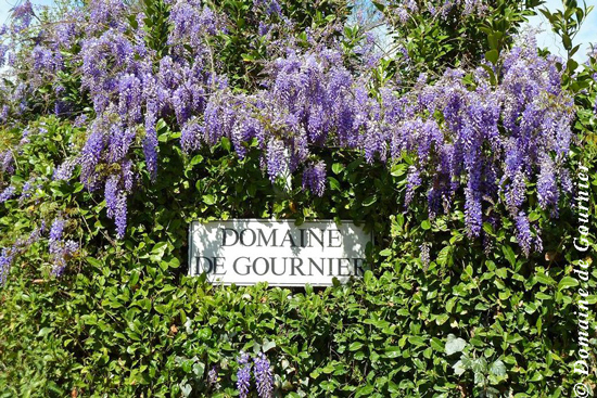 Domaine de Gournier