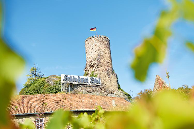 Schlossgut Diel Nahe