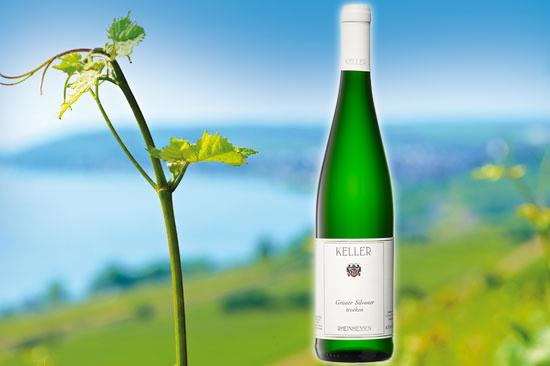 Weingut Keller