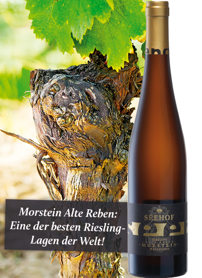 Weingut Seehof Morstein