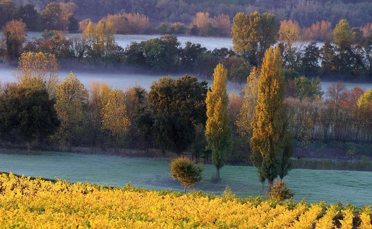 Bouvet-Ladubay - Loire