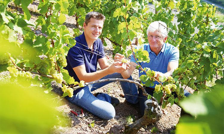 Vater und Sohn Schönleber bei der Ernte