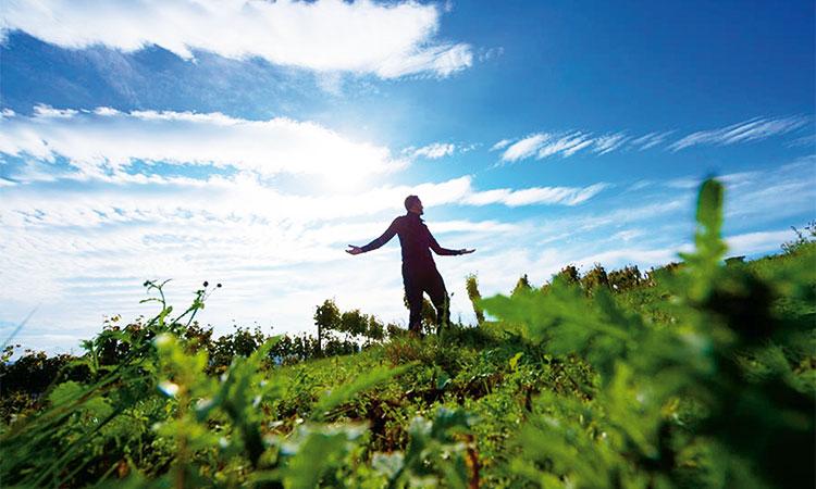 Zwischen Himmel und Erde und mittendrin Hans Oliver Spanier
