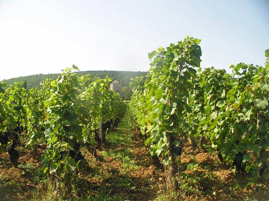 Dugat-Py, Burgund