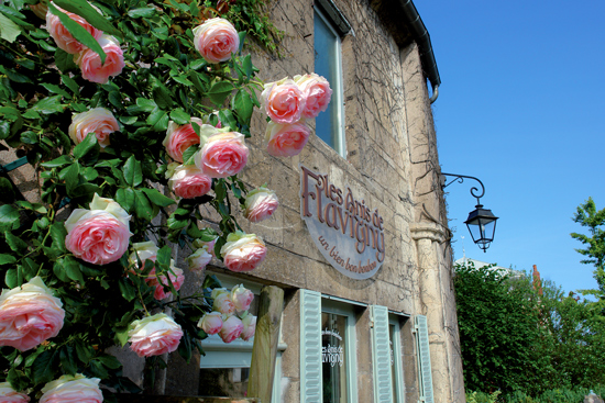 Les Anis de Flavigny - Flavigny-sur-Ozerain