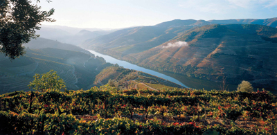 Graham's 2007 Vintage Port – Douro