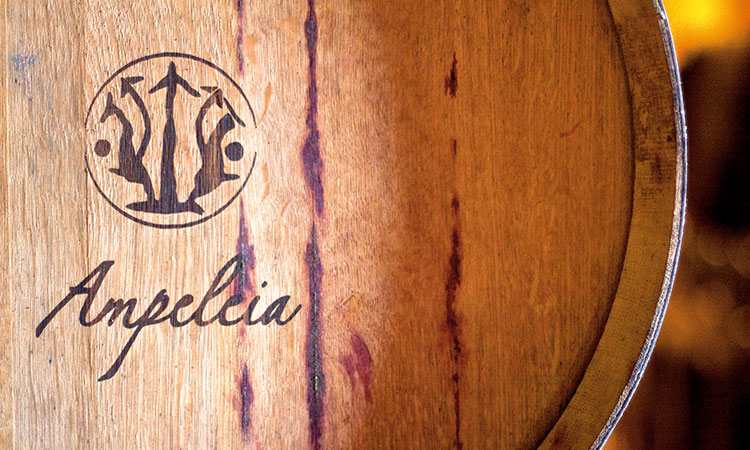 Weinfass des Weingutes Ampeleia