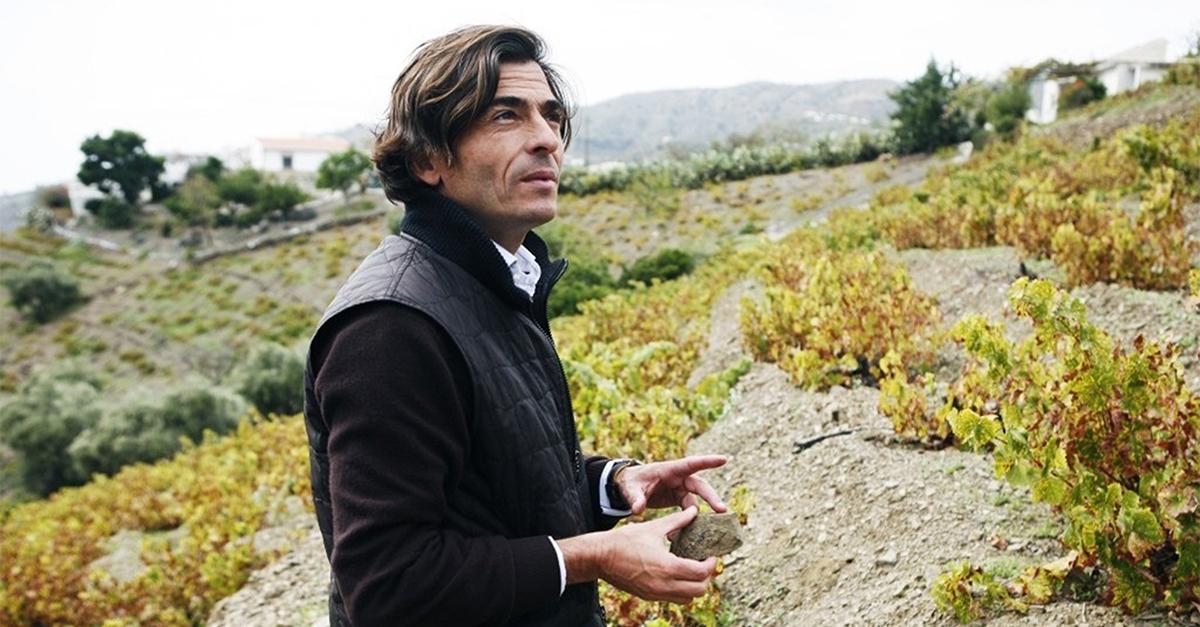 weinjahrgang 2013 spanien