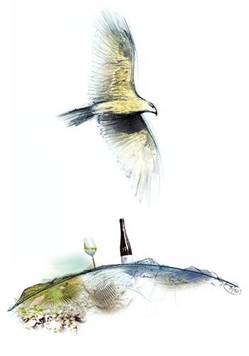 Schönleber