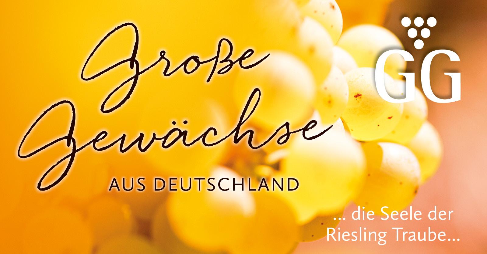 Große Gewächse aus Deutschland - Die Seele der Rieslingtraube