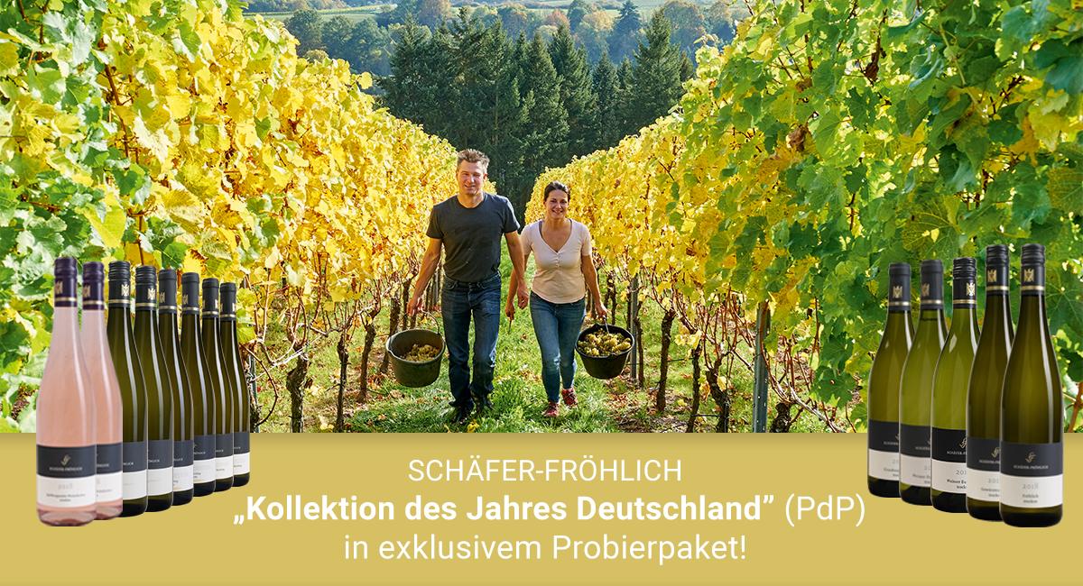 Schäfer-Fröhlich - Kollektion des Jahres