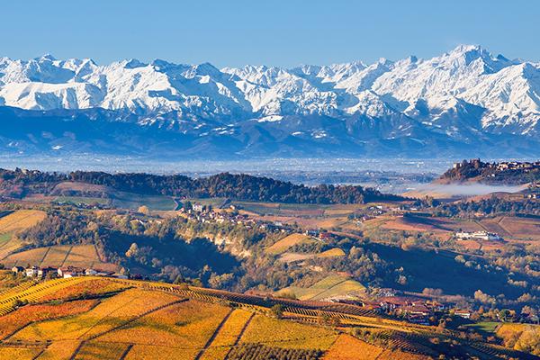 Weinabend - Piemont - KW45